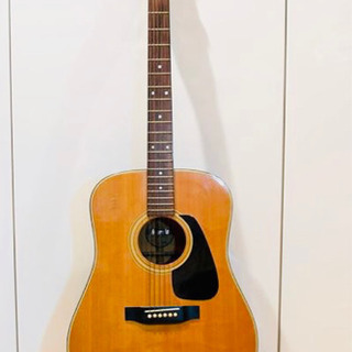 Morris MD-501 Acoustic Classic G...