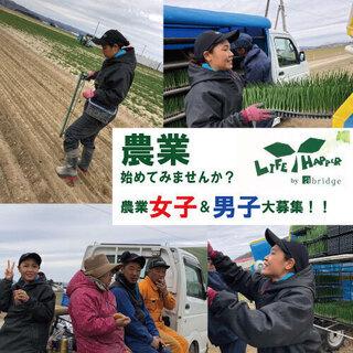 北海道 寮完備・赴任費支給アリ! 短期農業のお仕事です