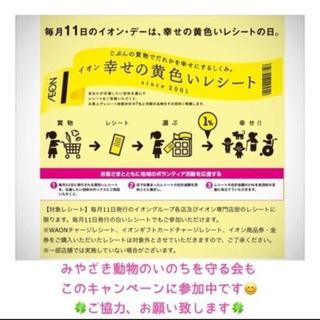 【毎月11日】 イオン 黄色いレシートの日 ご協力お願い致します🐱