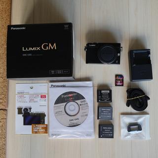 Panasonic LUMIX DMC-GM5 Black とおまけ!