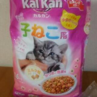 カルカン 子猫用エサ ドライフード