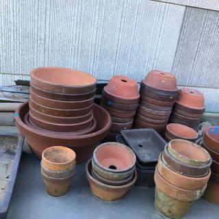 盆栽鉢、植木鉢 大小 大量