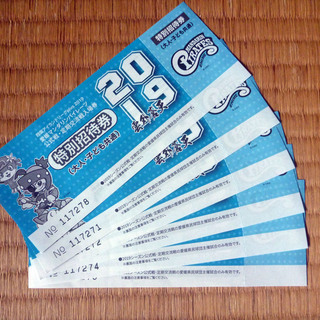 チケット)マンダリンパイレーツ6枚