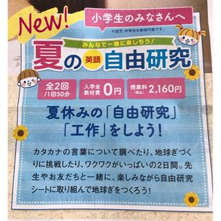 英語で夏の自由研究をしよう!