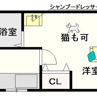 【GROOVE難波】8号タイプ!1Kタイプ!猫も飼育できるよ☆