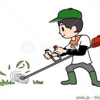 草刈り作業します。