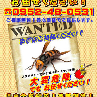 佐賀の蜂の巣駆除お任せ下さい。