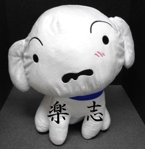 【売ります】クレヨンしんちゃん★シロ★特大ぬいぐるみ★約45cm (古場 創志)  富士のおもちゃ《ぬいぐるみ》の中古あげます・譲ります|ジモティーで不用品の処分