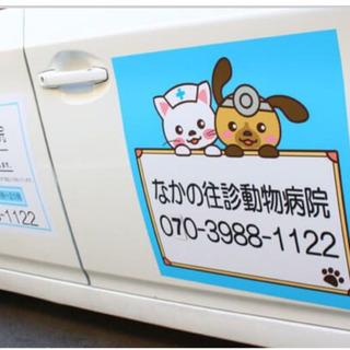 【新規☆往診専門】犬 猫 うさぎの診察に世田谷区より女性獣医師がご...