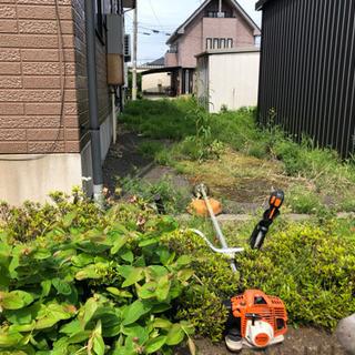 お庭の草取り   樹木剪定