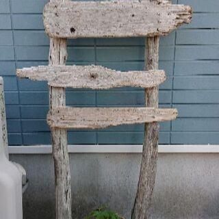 世界に一つだけ(^-^)/流木で作った看板・ツル植物の誘引に(^...