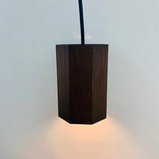 照明器具☆LED小型ペンダント 大光電気 2015年製 DPN-...