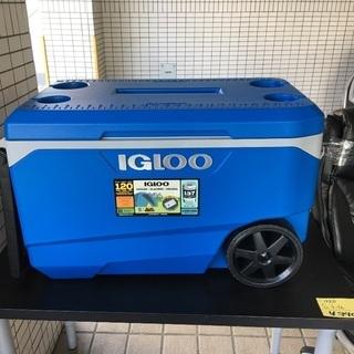 【未使用品】IGLOO  クーラーボックス