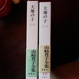 山崎豊子 著 小説 大地の子上下巻