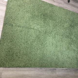 グリーンのカーペット/ラグ