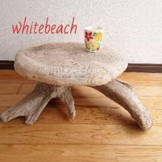 流木西海岸ローテーブル。樹齢50年。