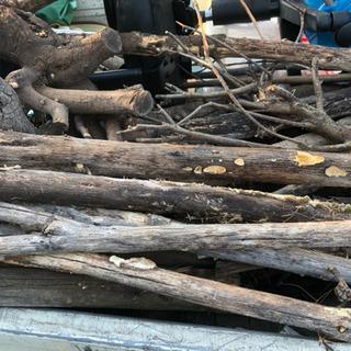枯れ木 薪用にどうですか?