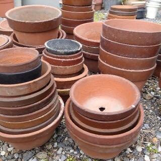 植木鉢色々