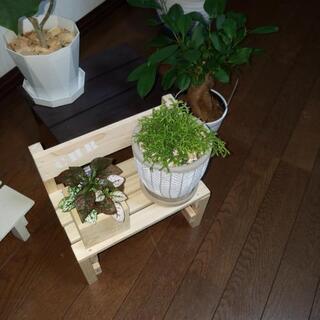 可愛い💠植物用ベンチ