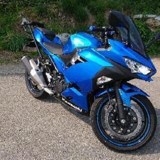 現行 新型 ninja 250 ブルー オプション充実 極上 転...