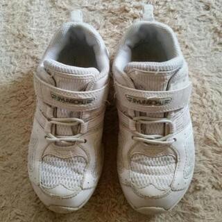 白 キッズ靴 20cm