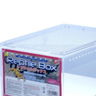 レプタイルズボックス 三個セット
