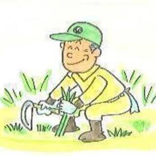 清掃や雑用、庭の草取り、手入れなど引き受けます
