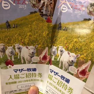 【3000円相当】マザー牧場 招待券【6/30まで】