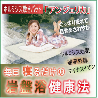 【新品:未使用品】岩盤浴気分を体感できるホルミシス敷きパット「ア...