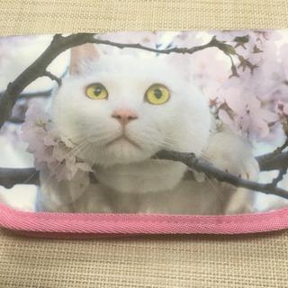 岩合光昭さんのねこ マルチケース(新品未使用)