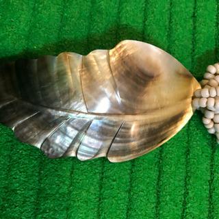 シェルで出来てる木の葉型のネックレス