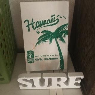 🏄♀️🏄♂️【Hawaii】ワンコイン