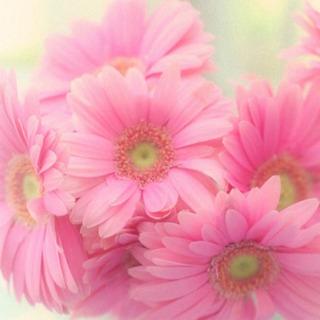 【長野】美近な®︎料理教室《夏をのりきる!養生ごはん》