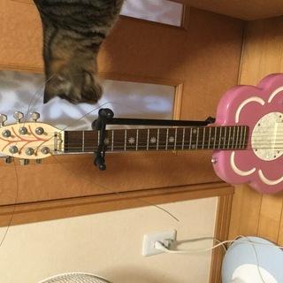 子ども用ギター スタンド付き取り来られ方に差し上げます!