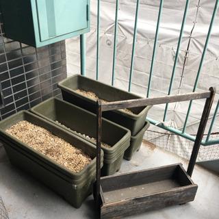プランター ガーデニング 植木鉢