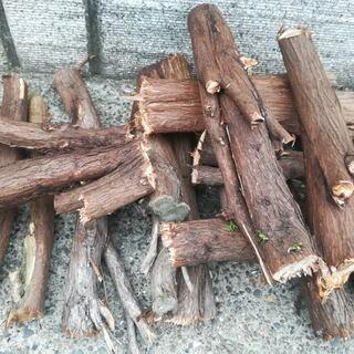 薪 (伐採木の一部)あげます。検索用:木材・材木・丸太。
