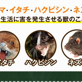 【MISSION:アライグマを捕まえろ】害獣駆除スタッフ【寮付き】