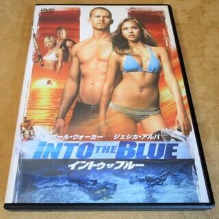 ☆DVD/INTO THE BLUE イントゥ・ザ・ブルー◆カリ...
