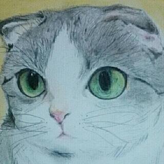 ペットの似顔絵描きます⭐500円⭐