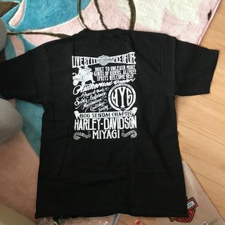 ハーレーダビットソン Tシャツ 新品3L