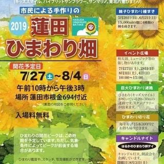 蓮田ひまわり畑2019  7月27日~8月4日開催❗