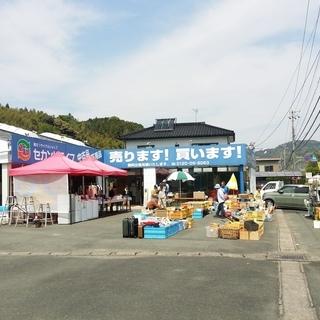 浜松市 7月13,14日 キッチンカー募集♪「Mさんのおもいつき市...