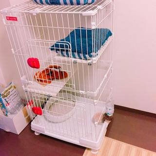 ペットゲージ /猫用/水受け付き/アイリスオーヤマ