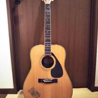 決定しました!アコースティックギター