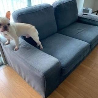 【三軒茶屋】IKEAのソファあげます!Free IKEA Sofa!