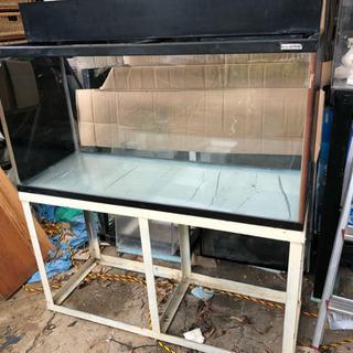 大型ガラス水槽
