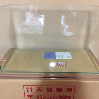 バックスクリーン貼付済【アクロ】オールガラス60cm水槽