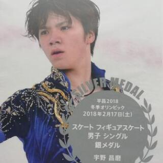 ■【2018年】ピョンチャン(平昌)冬季オリンピック ◆ フィギ...