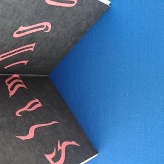 米津玄師 9thシングル Flamingo / TEENAGE RIOT フラミンゴ盤(初回限定)おまけDVD「Flamingo」Special Video(1min)  - 徳島市