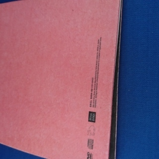 米津玄師 9thシングル Flamingo / TEENAGE RIOT フラミンゴ盤(初回限定)おまけDVD「Flamingo」Special Video(1min)  - 本/CD/DVD